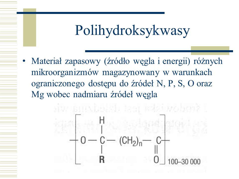 Polihydroksykwasy Materiał zapasowy (źródło węgla i energii) różnych mikroorganizmów magazynowany w warunkach ograniczonego dostępu do źródeł N, P, S,