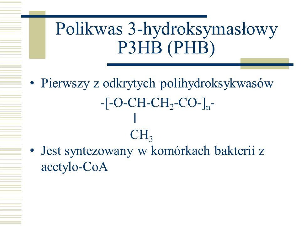 Polikwas 3-hydroksymasłowy P3HB (PHB) Pierwszy z odkrytych polihydroksykwasów -[-O-CH-CH 2 -CO-] n - l CH 3 Jest syntezowany w komórkach bakterii z ac