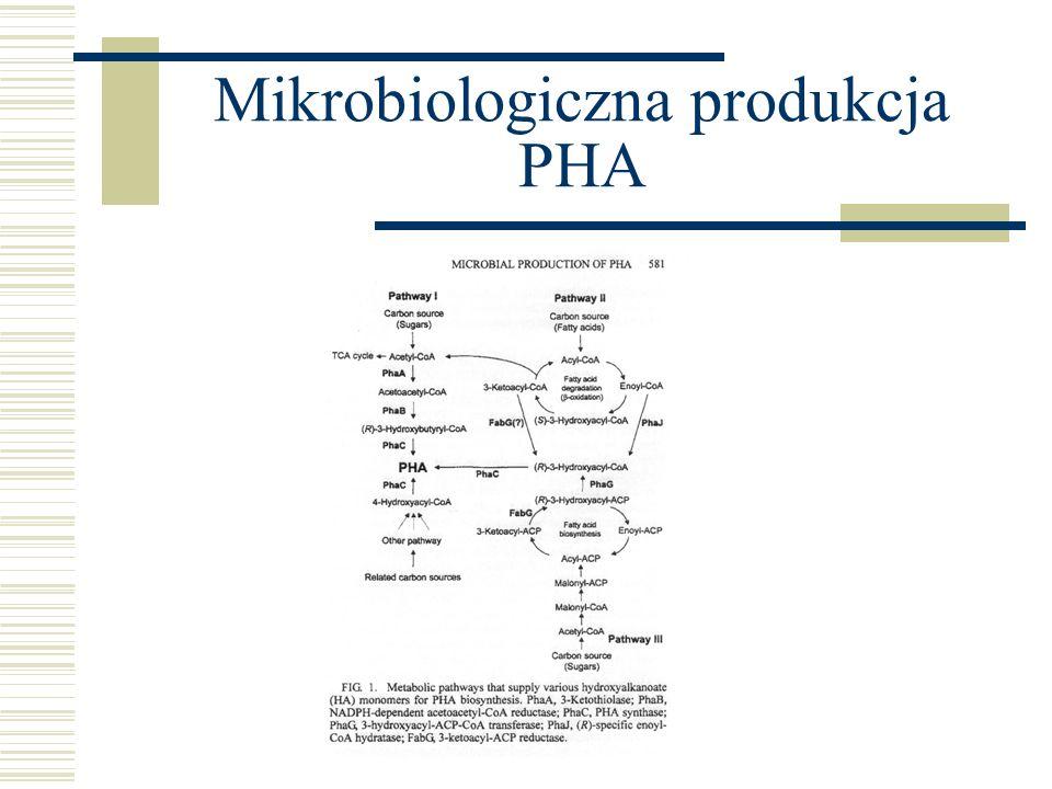 Mikrobiologiczna produkcja PHA