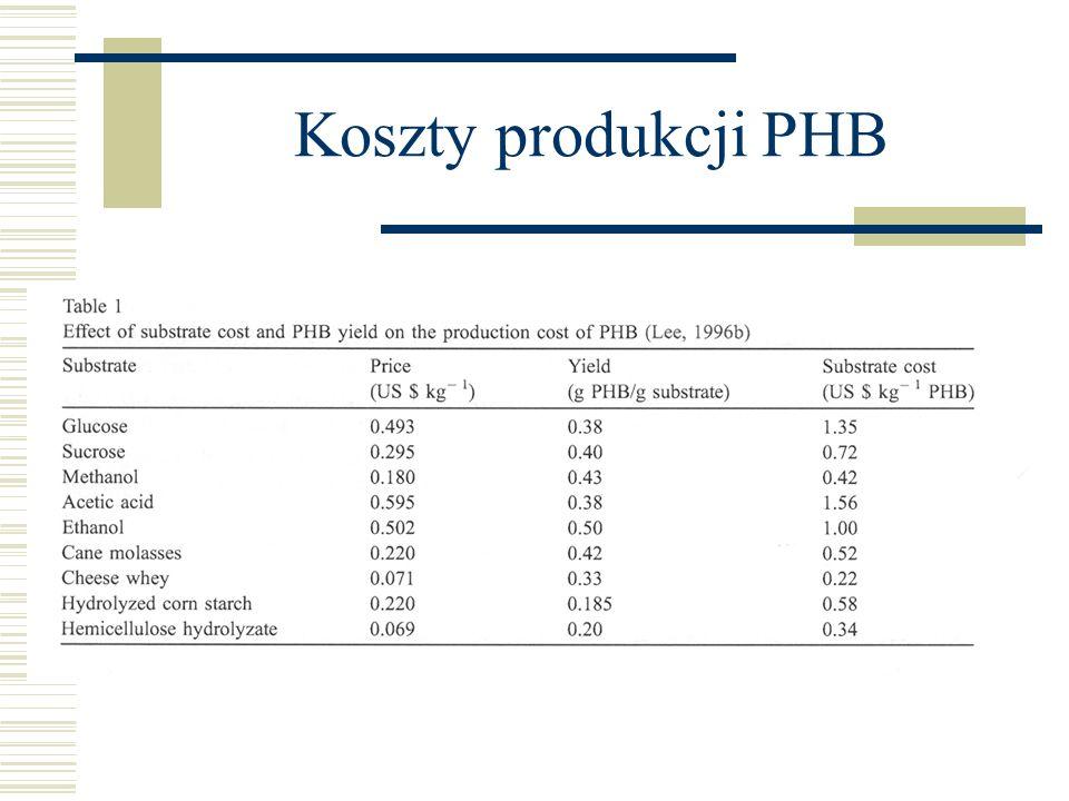 Koszty produkcji PHB