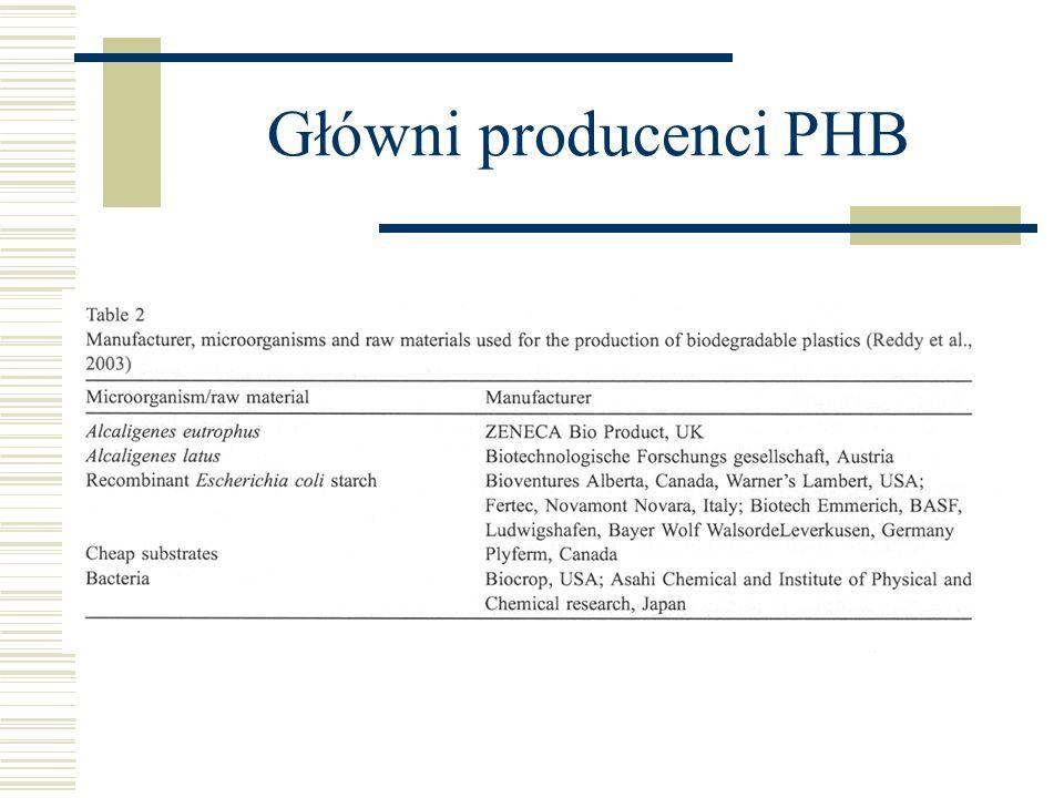 Główni producenci PHB