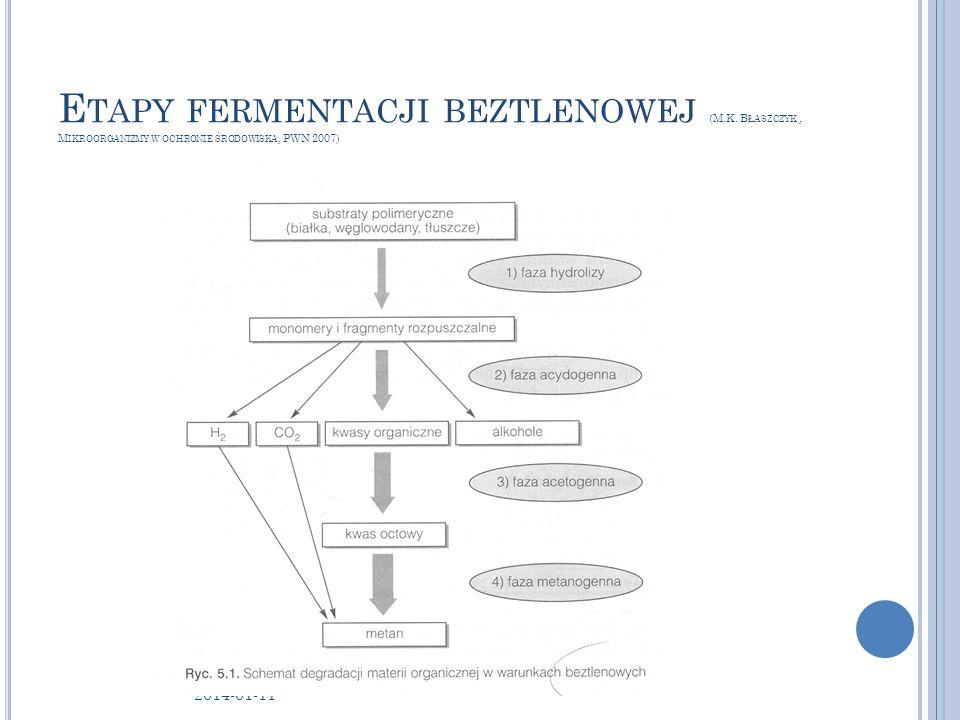 E TAPY FERMENTACJI BEZTLENOWEJ (M.K. B ŁASZCZYK, M IKROORGANIZMY W OCHRONIE ŚRODOWISKA, PWN 2007) 2014-01-11 12