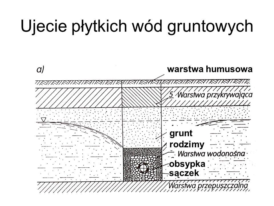 Ujecie płytkich wód gruntowych warstwa humusowa grunt rodzimy sączek obsypka