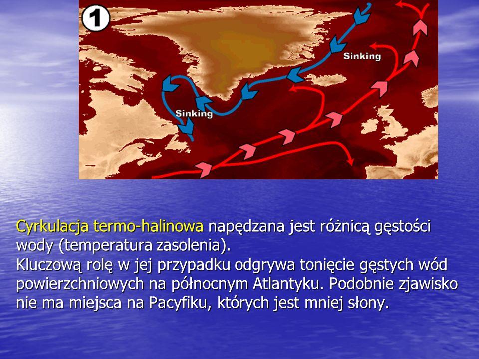Cyrkulacja termo-halinowa napędzana jest różnicą gęstości wody (temperatura zasolenia). Kluczową rolę w jej przypadku odgrywa tonięcie gęstych wód pow
