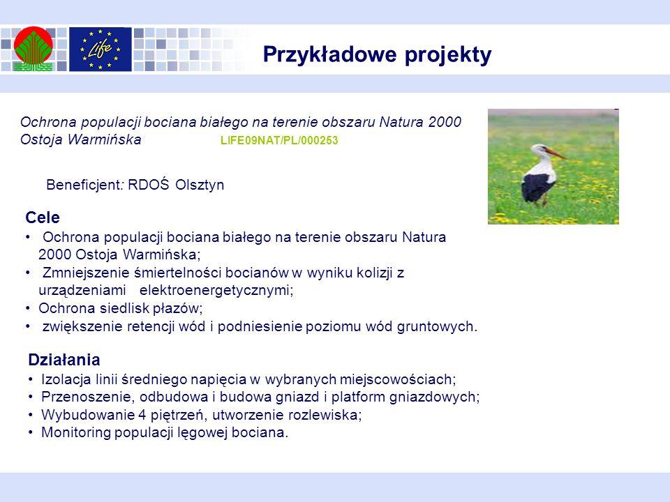 Ochrona populacji bociana białego na terenie obszaru Natura 2000 Ostoja Warmińska LIFE09NAT/PL/000253 Beneficjent: RDOŚ Olsztyn Działania Izolacja lin