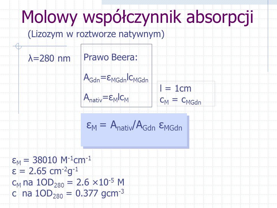 Molowy współczynnik absorpcji (Lizozym w roztworze natywnym) λ=280 nm Prawo Beera: A Gdn =ε MGdn lc MGdn A nativ =ε M lc M l = 1cm c M = c MGdn ε M =
