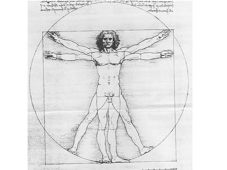 Nauka w dziejach kultury europejskiej Nowożytny ideał nauki cd.