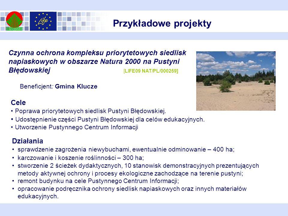 Czynna ochrona kompleksu priorytetowych siedlisk napiaskowych w obszarze Natura 2000 na Pustyni Błędowskiej [LIFE09 NAT/PL/000259] Beneficjent: Gmina