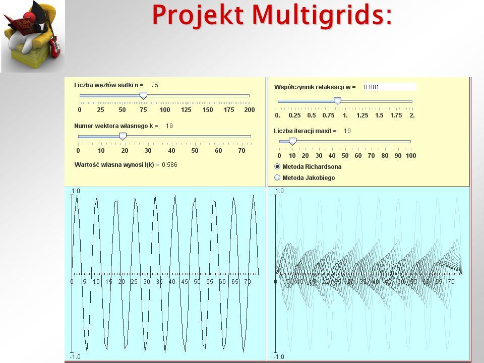 Struktura: MultigridFrame/MultigridApplet –WektorZerowyPanel ControlPanel GraphPanel WektorPoczatkowy ->IteracjePanel –IteracjePanel ControlPanel GraphPanel Numeryka ->WektorPoczatkowy