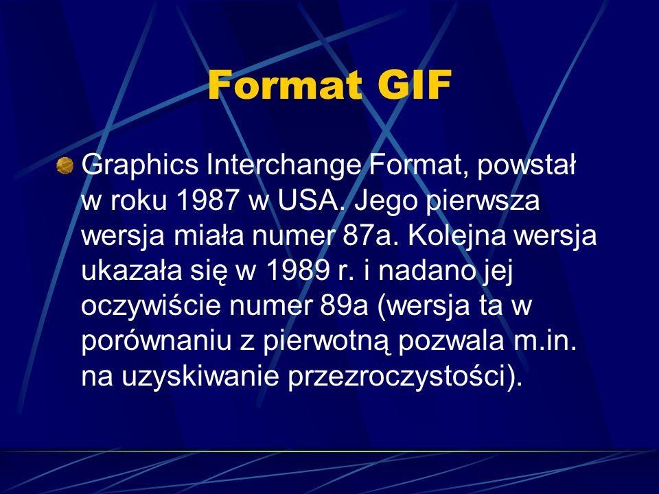 Format GIF Graphics Interchange Format, powstał w roku 1987 w USA. Jego pierwsza wersja miała numer 87a. Kolejna wersja ukazała się w 1989 r. i nadano