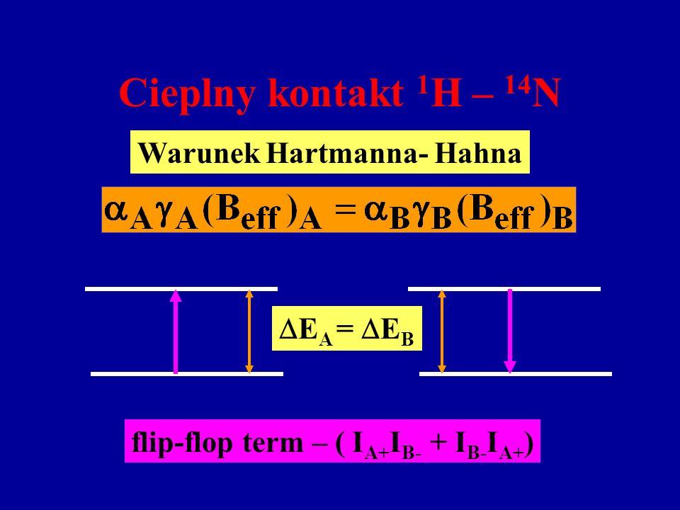 Cieplny kontakt 1 H – 14 N Warunek Hartmanna- Hahna E A = E B flip-flop term – ( I A+ I B- + I B- I A+ )