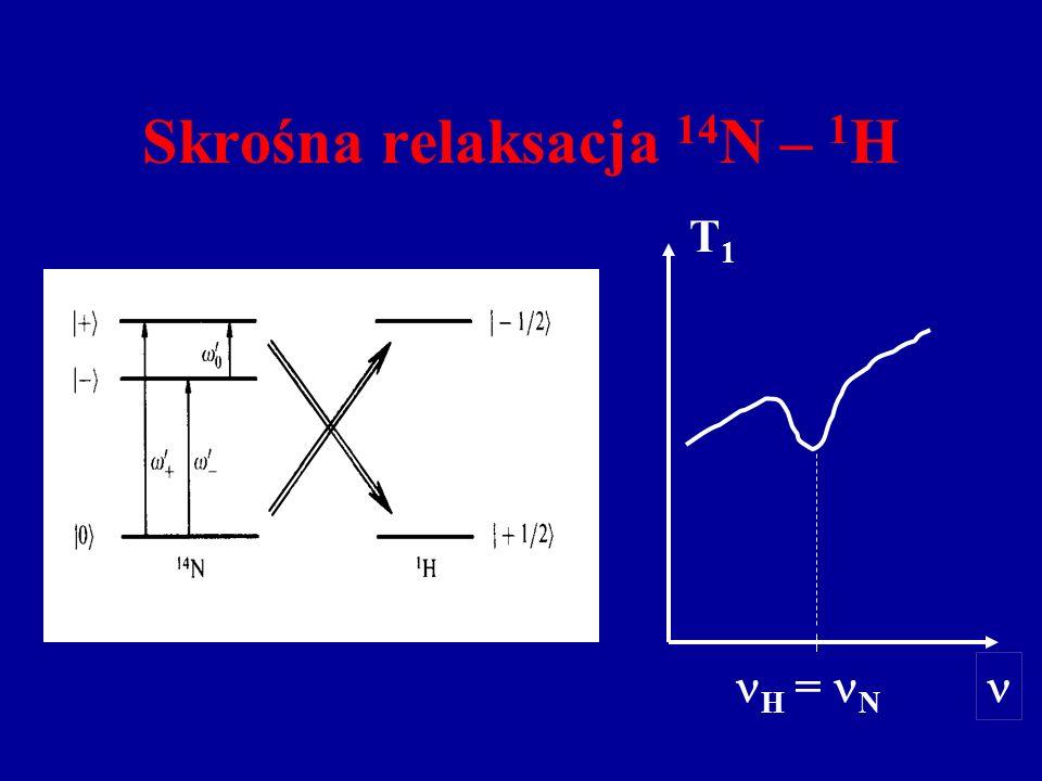 Skrośna relaksacja 14 N – 1 H H = N T1T1