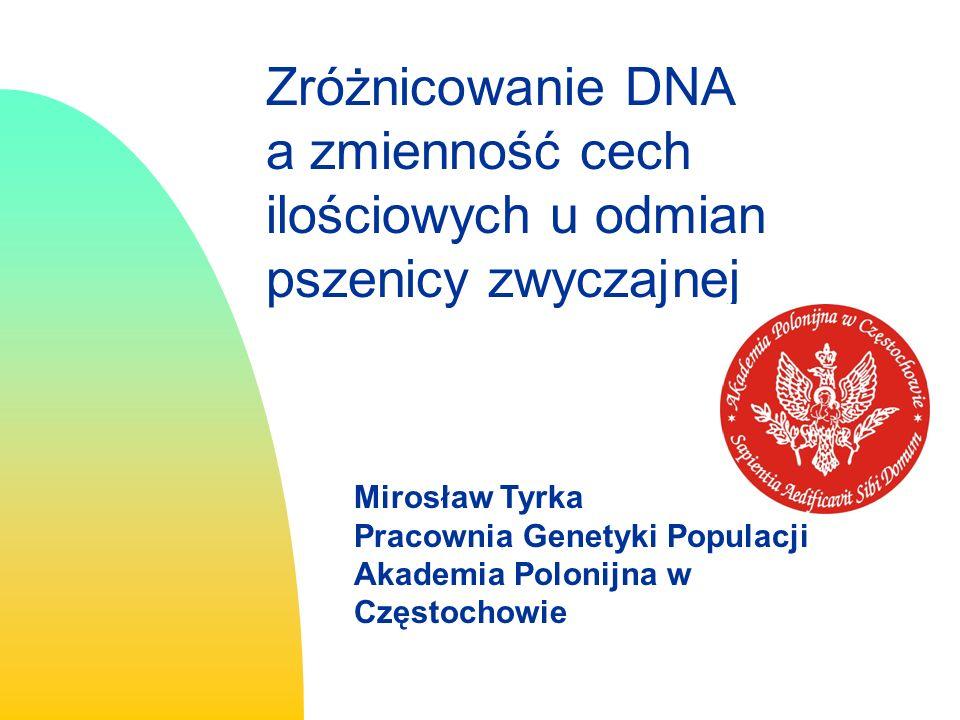 Zróżnicowanie DNA a zmienność cech ilościowych u odmian pszenicy zwyczajnej Mirosław Tyrka Pracownia Genetyki Populacji Akademia Polonijna w Częstochowie