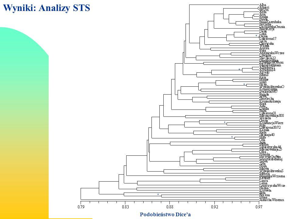 Wyniki: Analizy STS Podobieństwo Dicea * * * * * *