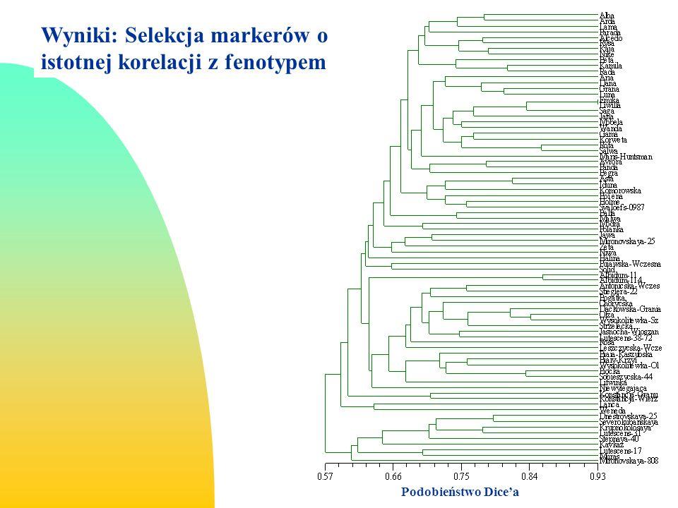 Wyniki: Selekcja markerów o istotnej korelacji z fenotypem Podobieństwo Dicea