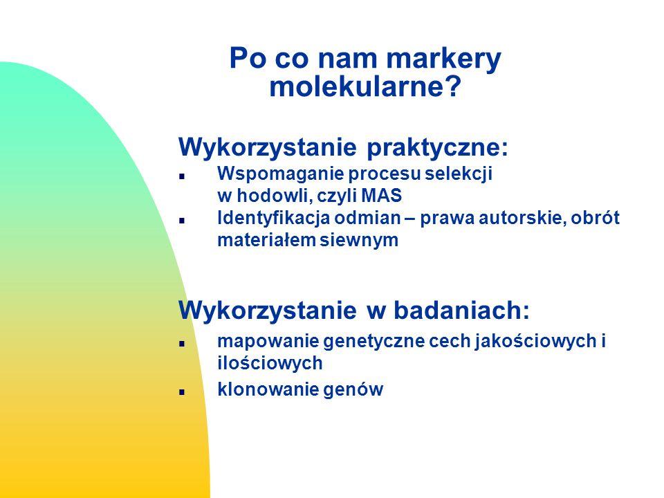 MAS Selekcja wspomagana markerami Marker Assisted Selection Selekcja w oparciu o markery DNA zwykle niezależna od: stadium wzrostu rośliny i czynników środowiskowych zalety: wczesna selekcja, szybkie nagromadzanie pożądanej cechy, nie niszczy testowanego materiału skrócenie czasu wytworzenia nowej odmiany Selekcja genu(ów) W celu oznaczenia obecności wprowadzonego genu stosowana kiedy bezpośredni test fenotypowy nie jest możliwy, zbyt kosztowny lub stosowany w późnym stadium rozwojowym Selekcja tła W celu przyspieszenia powrotu do rodzica wypierającego Doświadczalnie stwierdzono wysoką skuteczność markerów molekularnych do selekcji tła w programach wypierających
