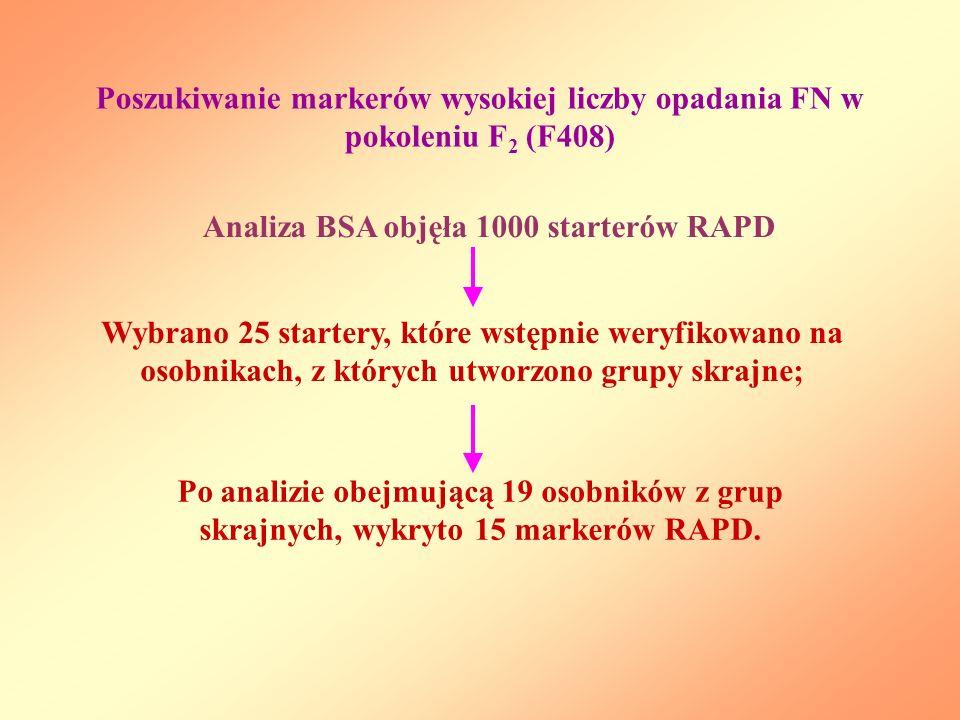 Analiza BSA objęła 1000 starterów RAPD Wybrano 25 startery, które wstępnie weryfikowano na osobnikach, z których utworzono grupy skrajne; Po analizie obejmującą 19 osobników z grup skrajnych, wykryto 15 markerów RAPD.
