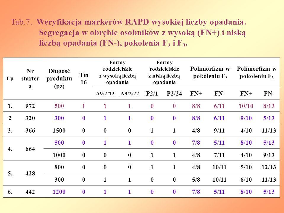 Lp Nr starter a Długość produktu (pz) Tm 16 Formy rodzicielskie z wysoką liczbą opadania Formy rodzicielskie z niską liczbą opadania Polimorfizm w pokoleniu F 2 Polimorfizm w pokoleniu F 3 A9/2/13A9/2/22 P2/1P2/24FN+FN-FN+FN- 1.972500111008/86/1110/108/13 2320300011008/86/119/105/13 3.3661500000114/89/114/1011/13 4.664 500011007/85/118/105/13 1000000114/87/114/109/13 5.428 800000114/810/115/1012/13 300011005/810/116/1011/13 6.4421200011007/85/118/105/13 Tab.7.