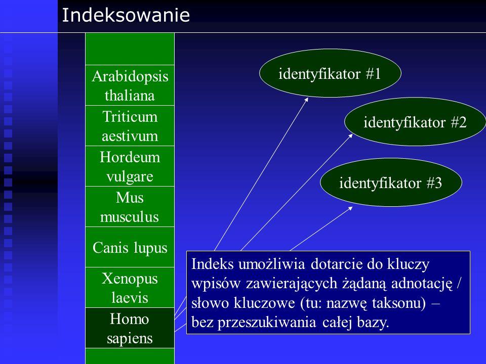 Indeksowanie Arabidopsis thaliana Triticum aestivum Hordeum vulgare Mus musculus Canis lupus Homo sapiens Xenopus laevis identyfikator #1 identyfikato