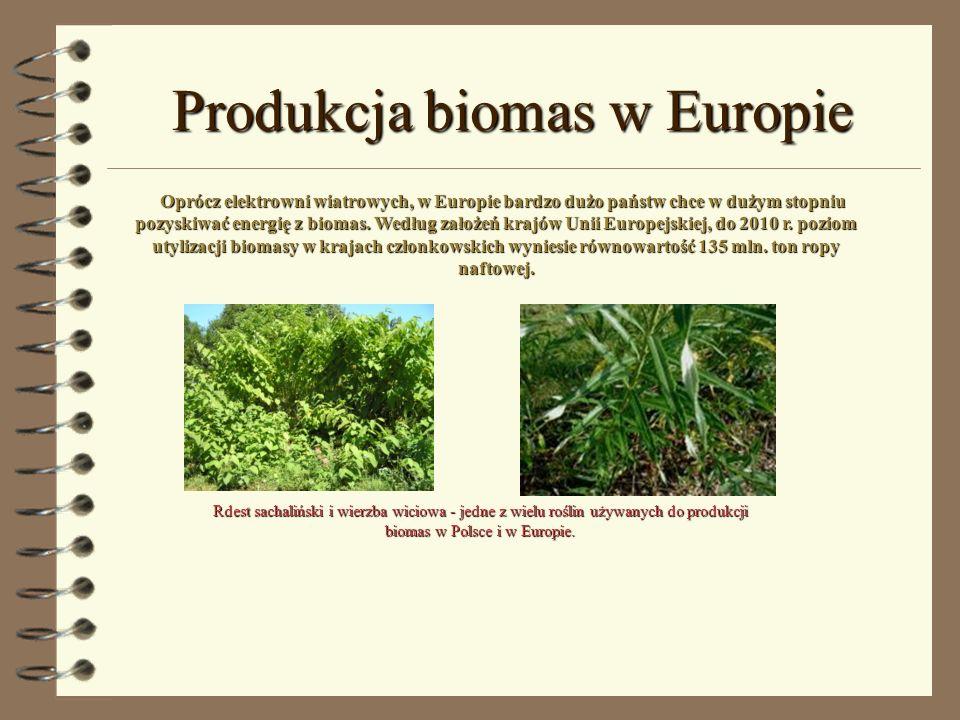 Produkcja biomas w Europie Oprócz elektrowni wiatrowych, w Europie bardzo dużo państw chce w dużym stopniu pozyskiwać energię z biomas. Według założeń