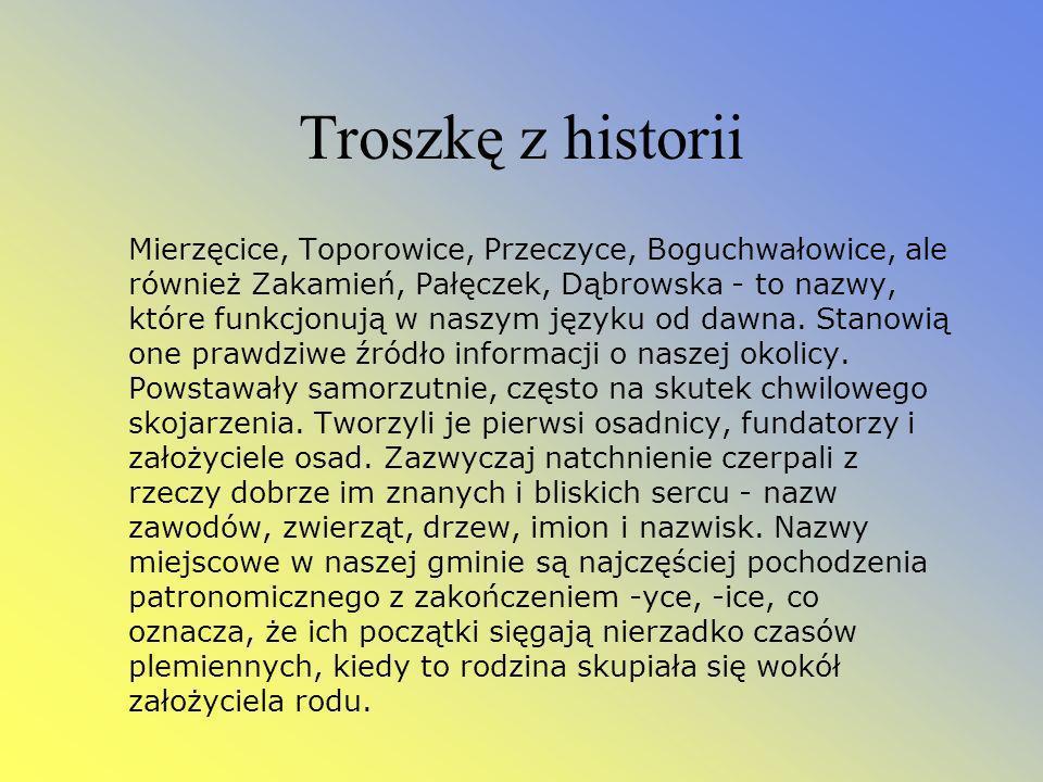 Troszkę z historii Mierzęcice, Toporowice, Przeczyce, Boguchwałowice, ale również Zakamień, Pałęczek, Dąbrowska - to nazwy, które funkcjonują w naszym języku od dawna.