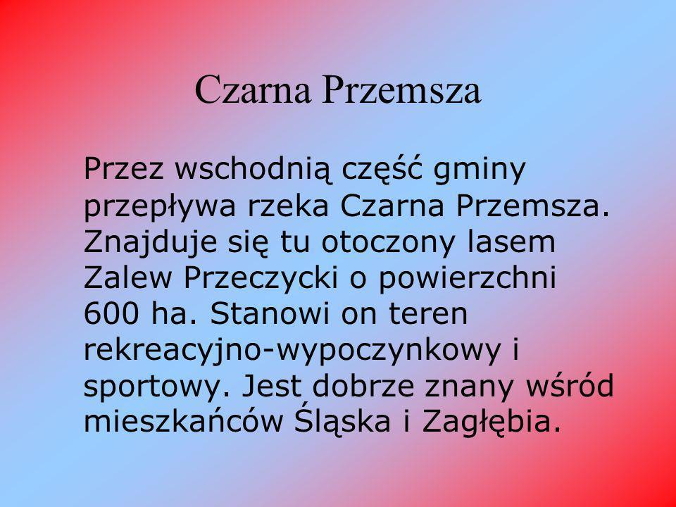 Czarna Przemsza Przez wschodnią część gminy przepływa rzeka Czarna Przemsza.