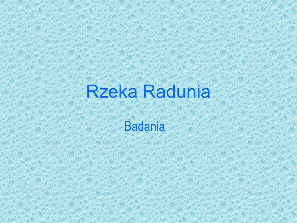 Rzeka Radunia RZEKA: Radunia jest lewym dopływem Motławy o długości 104,6 km i powierzchni dorzecza 817,1 km2.