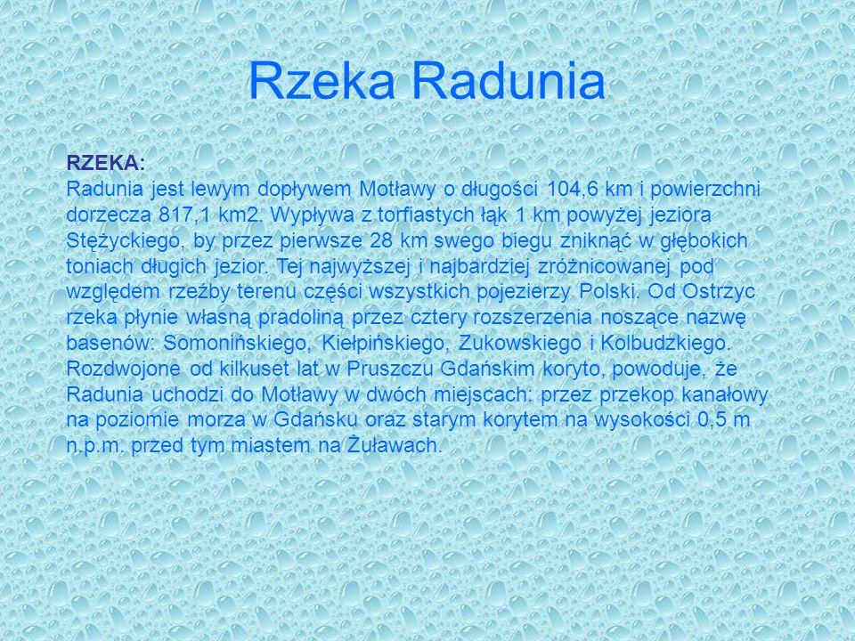 Rzeka Radunia RZEKA: Radunia jest lewym dopływem Motławy o długości 104,6 km i powierzchni dorzecza 817,1 km2. Wypływa z torfiastych łąk 1 km powyżej