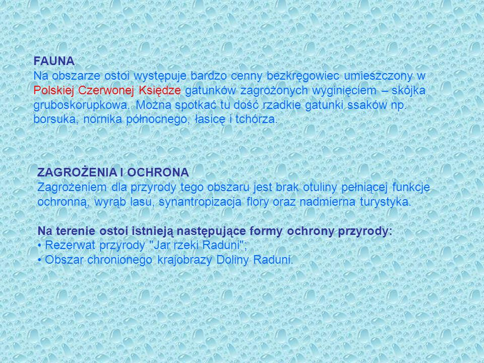 FAUNA Na obszarze ostoi występuje bardzo cenny bezkręgowiec umieszczony w Polskiej Czerwonej Księdze gatunków zagrożonych wyginięciem – skójka grubosk