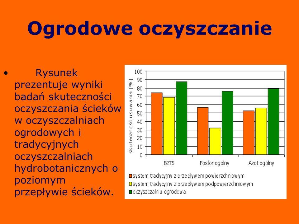 Ogrodowe oczyszczanie Rysunek prezentuje wyniki badań skuteczności oczyszczania ścieków w oczyszczalniach ogrodowych i tradycyjnych oczyszczalniach hy