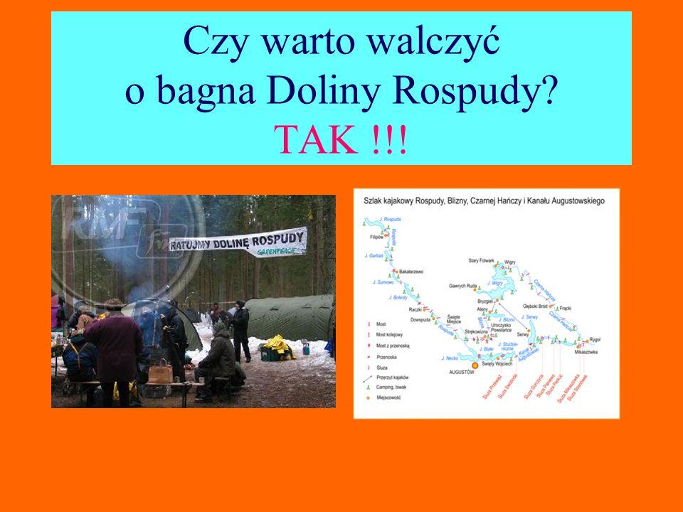 Czy warto walczyć o bagna Doliny Rospudy? TAK !!!