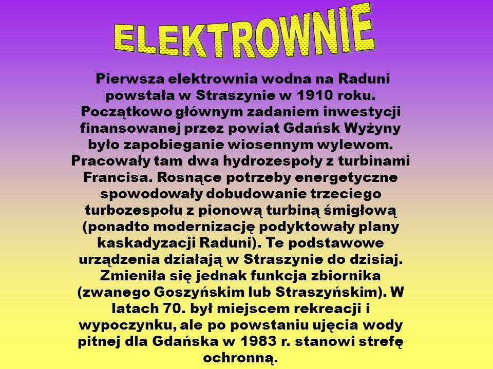 Pierwsza elektrownia wodna na Raduni powstała w Straszynie w 1910 roku. Początkowo głównym zadaniem inwestycji finansowanej przez powiat Gdańsk Wyżyny