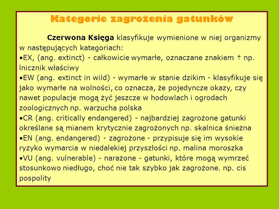 Kategorie zagrożenia gatunków Czerwona Księga klasyfikuje wymienione w niej organizmy w następujących kategoriach: EX, (ang.