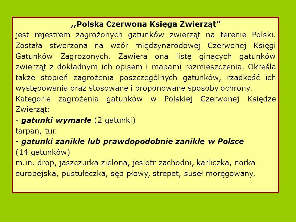 ,,Polska Czerwona Księga Zwierząt jest rejestrem zagrożonych gatunków zwierząt na terenie Polski.