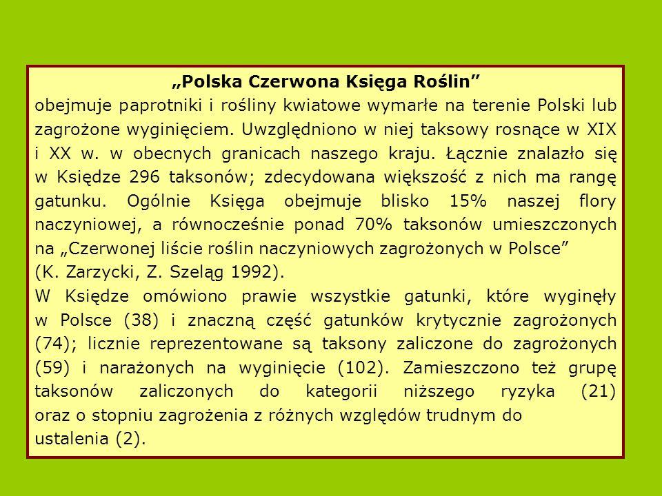 - gatunek rośliny z rodziny kapustowatych o drobnych, białych kwiatach, rosnący kiedyś jedynie przy źródłach Pustyni Błędowskiej.