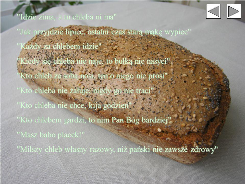 Idzie zima, a tu chleba ni ma Jak przyjdzie lipiec, ostatni czas starą mąkę wypiec Każdy za chlebem idzie Kiedy się chleba nie naje, to bułką nie nasyci Kto chleb ze sobą nosi, ten o niego nie prosi Kto chleba nie żałuje, nigdy go nie traci Kto chleba nie chce, kija godzien Kto chlebem gardzi, to nim Pan Bóg bardziej Masz babo placek! Milszy chleb własny razowy, niż pański nie zawsze zdrowy