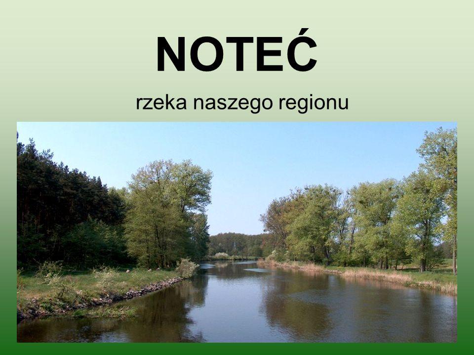 NOTEĆ rzeka naszego regionu