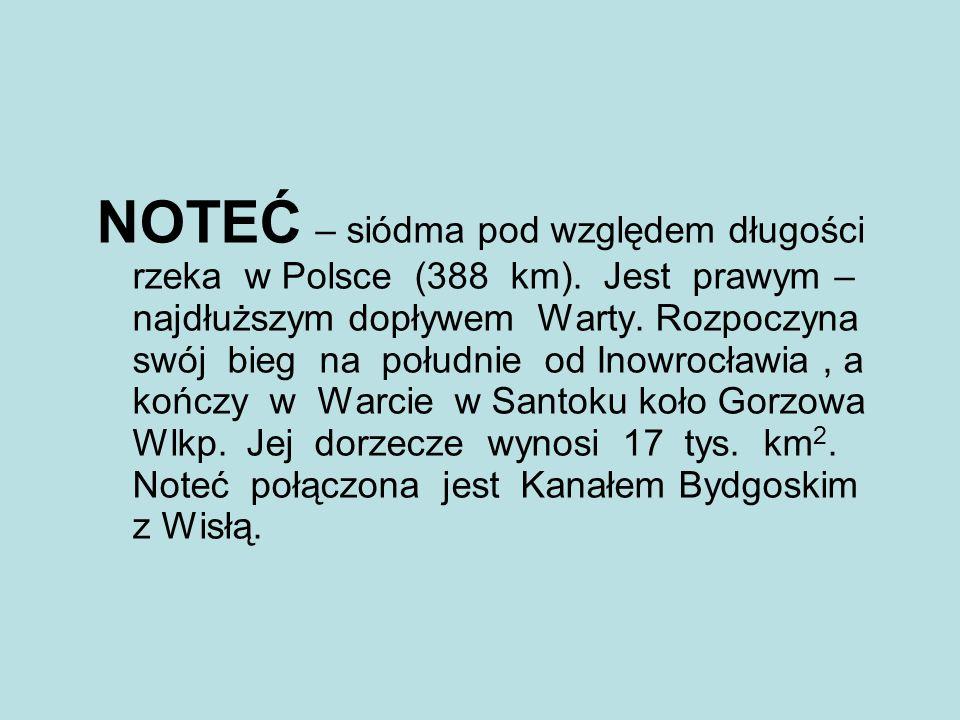 NOTEĆ – siódma pod względem długości rzeka w Polsce (388 km). Jest prawym – najdłuższym dopływem Warty. Rozpoczyna swój bieg na południe od Inowrocław