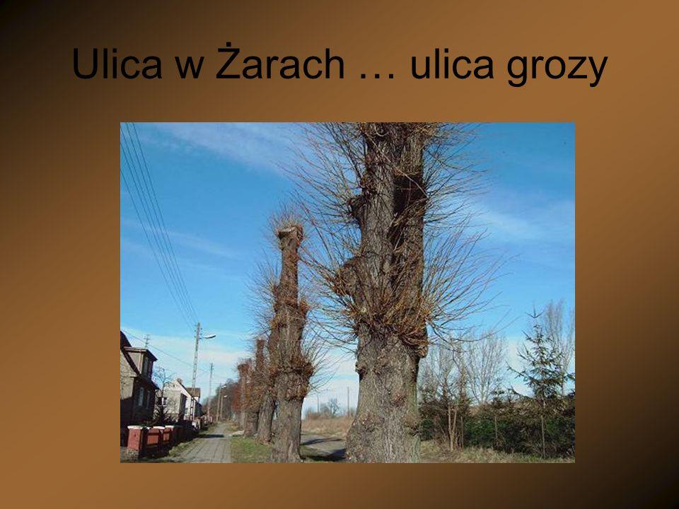 Ulica w Żarach … ulica grozy