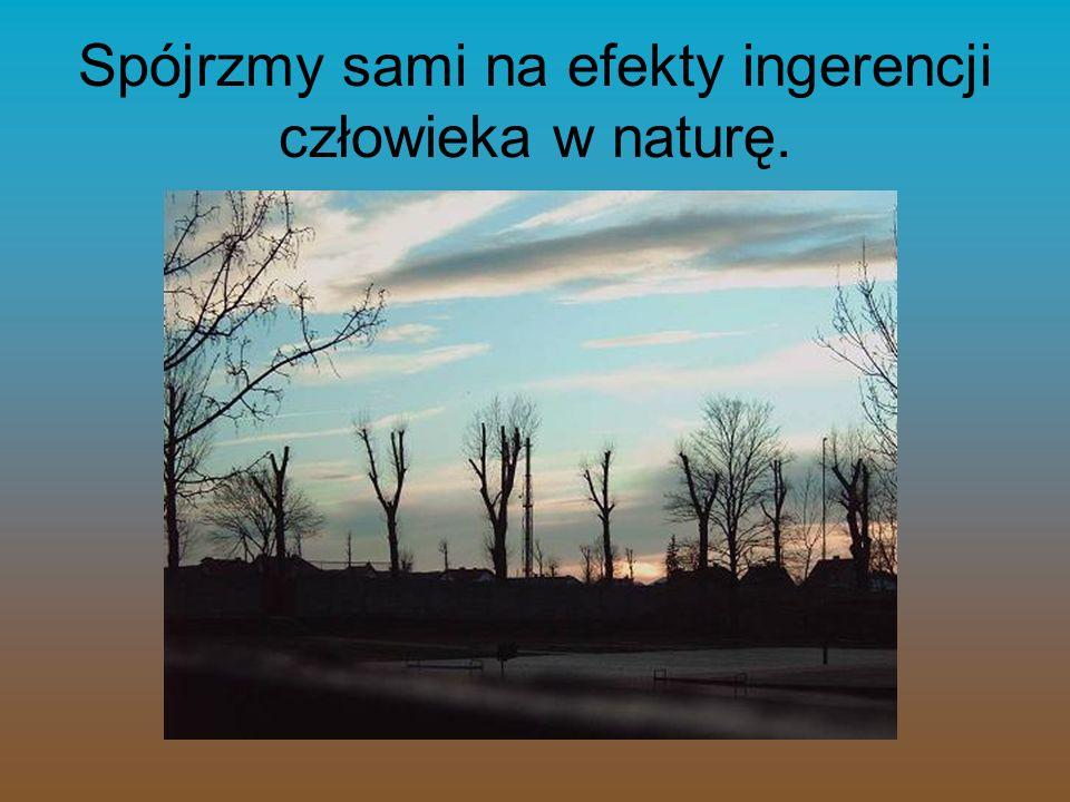Spójrzmy sami na efekty ingerencji człowieka w naturę.