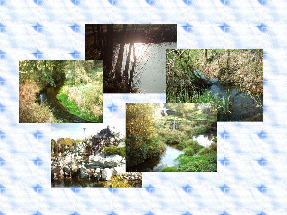 Wiersze, wierszyki, rymowanki o wodzie Kropla wody Niby mała, a cuda zdziała.