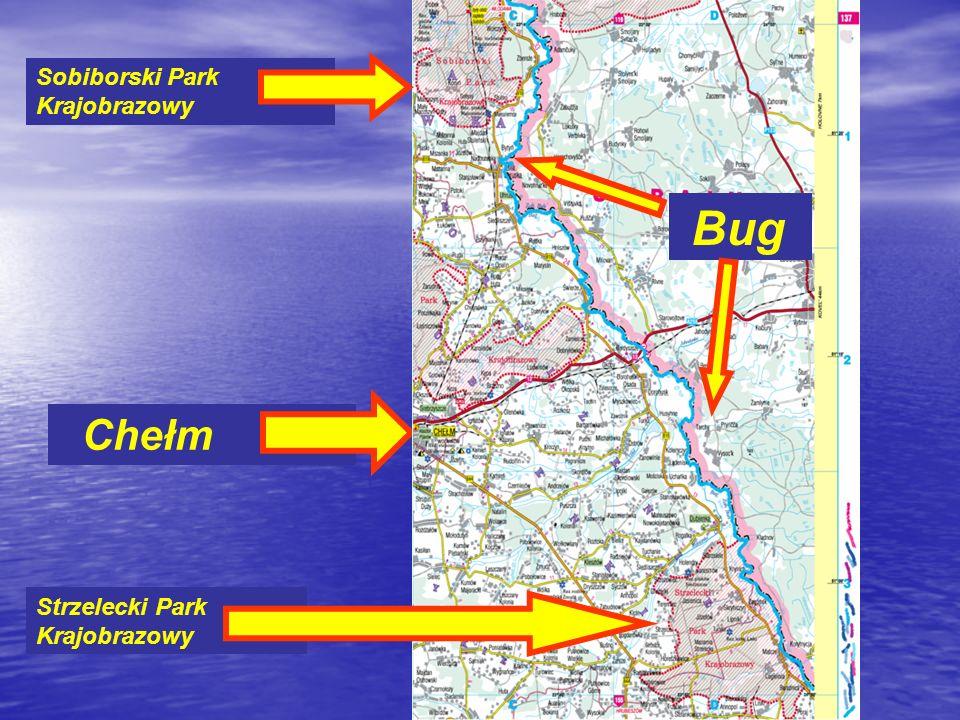Chełm Sobiborski Park Krajobrazowy Strzelecki Park Krajobrazowy Bug