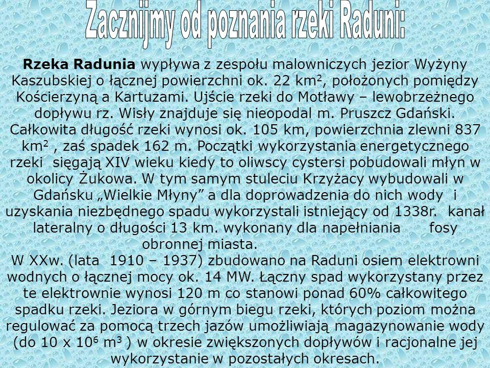 Rzeka Radunia wypływa z zespołu malowniczych jezior Wyżyny Kaszubskiej o łącznej powierzchni ok.