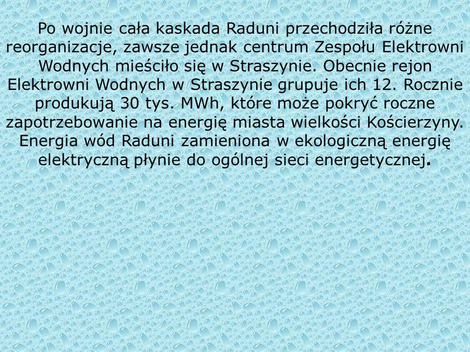 Elektrownia Wodna Rutki – Tu inwestorem był powiat kartuski. Cel uruchomienia zakładu był przede wszystkim energetyczny, elektrownia zaś miała dostarc