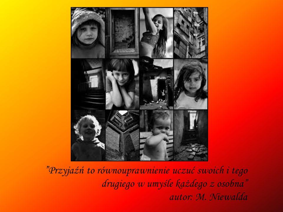 Przyjaźń to równouprawnienie uczuć swoich i tego drugiego w umyśle każdego z osobna autor: M. Niewalda