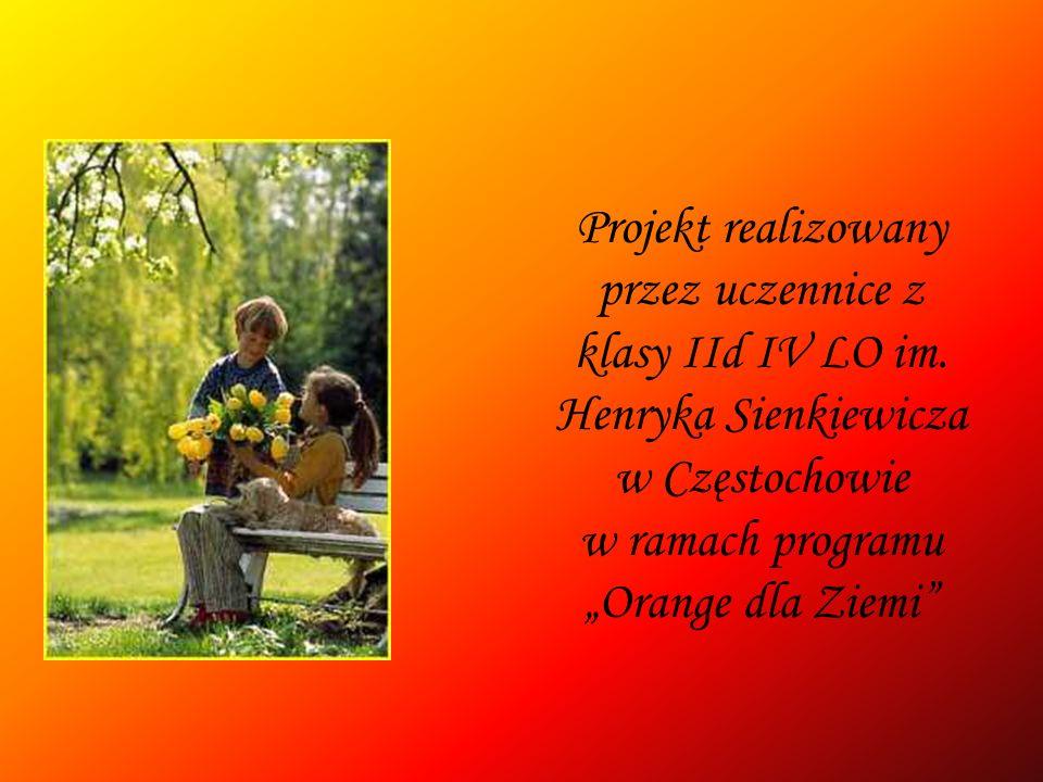 Projekt realizowany przez uczennice z klasy IId IV LO im. Henryka Sienkiewicza w Częstochowie w ramach programu Orange dla Ziemi