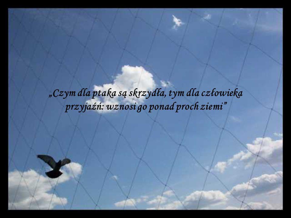 Czym dla ptaka są skrzydła, tym dla człowieka przyjaźń: wznosi go ponad proch ziemi