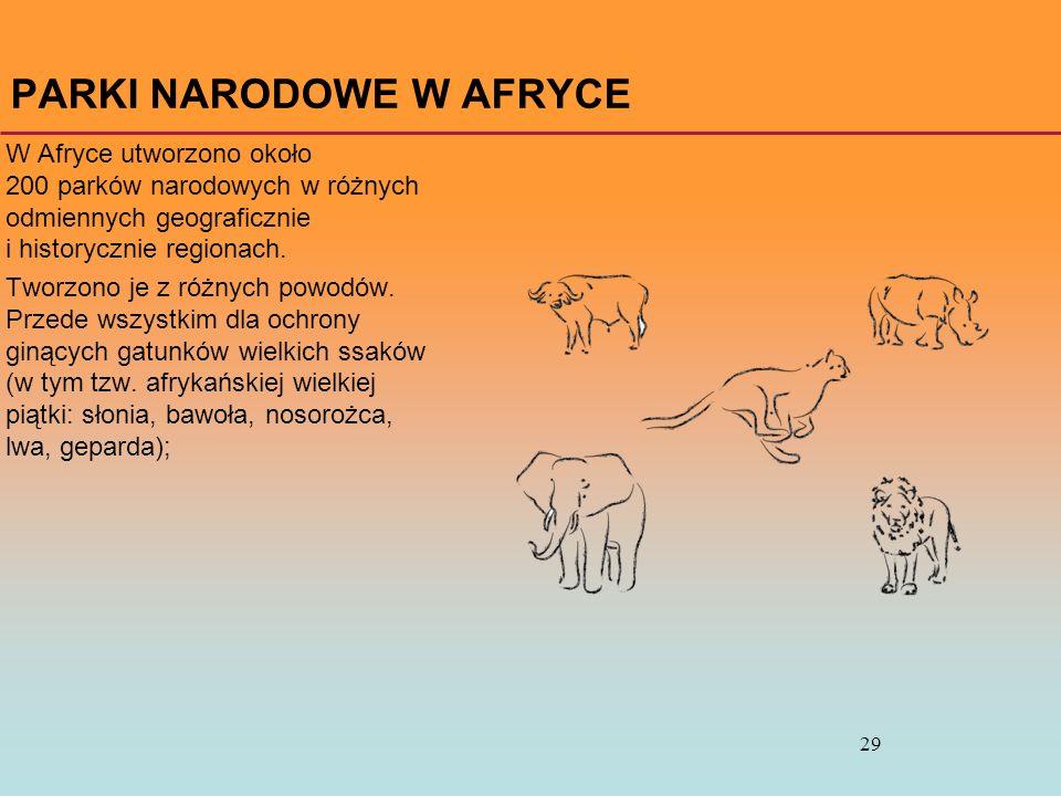 29 PARKI NARODOWE W AFRYCE W Afryce utworzono około 200 parków narodowych w różnych odmiennych geograficznie i historycznie regionach. Tworzono je z r