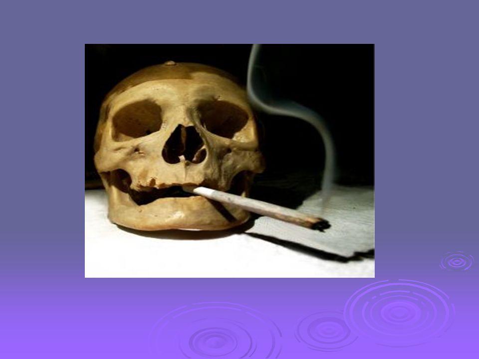 Papieros Wyrób tytoniowy składający się z rurki z cienkiej bibułki (gilzy) o średnicy do 1 cm i długości do 12 cm (zwykle 85 mm), wewnątrz której znajduje się mieszanka tytoniowa zawierająca spreparowane liście różnych odmian tytoniu (lub rzadziej marihuany, cracku czy innych substancji działających narkotycznie).