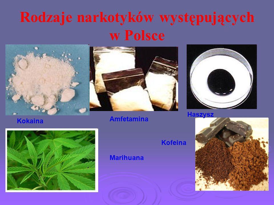 Rodzaje narkotyków występujących w Polsce Kokaina Amfetamina Marihuana Haszysz Kofeina